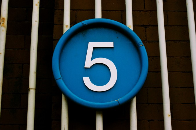 Five Fascinating Facts About __________