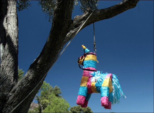 """""""You might be wondering why I work at a hospital for piñatas."""""""