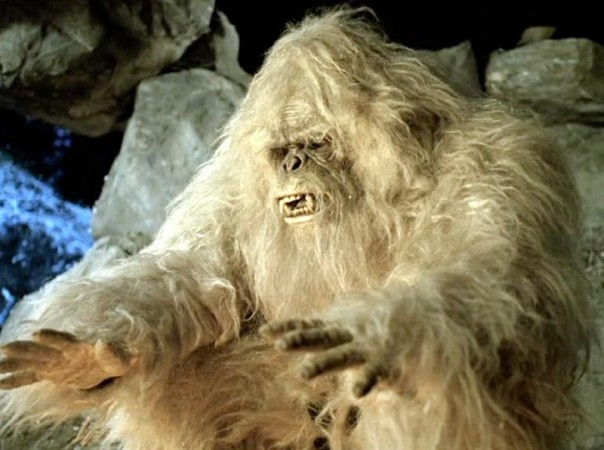 Tell the story of a Yeti family searching for proof of humans.