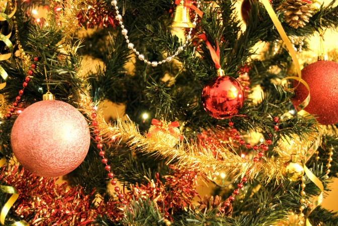 Real or artificial? Make the case for which kind of Christmas tree is better.