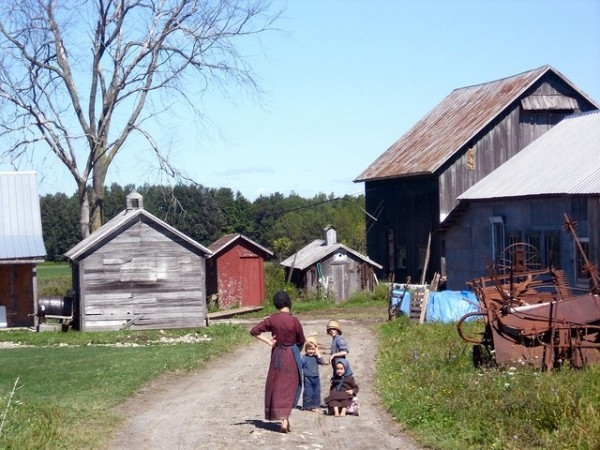 """This family has a lot of chores on their farm. Make up a """"To-Do"""" list for them today."""