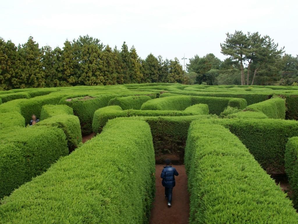 maze.002