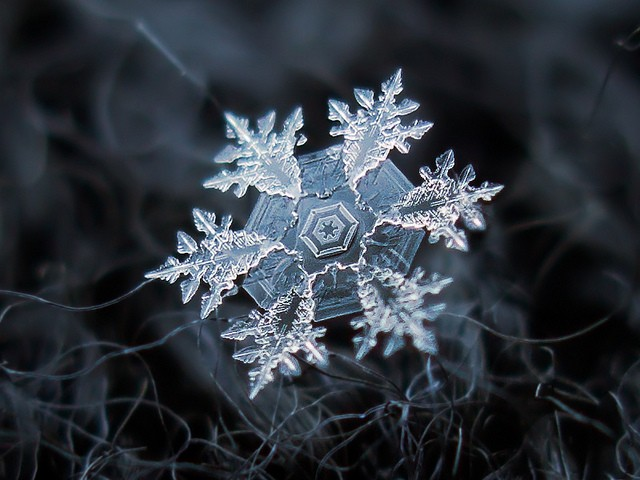 What makes snowflakes so fascinating?