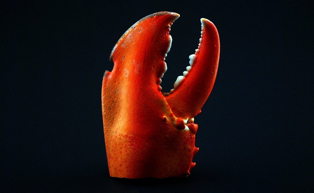 How would civilization be different if humans had lobster claws instead of hands?