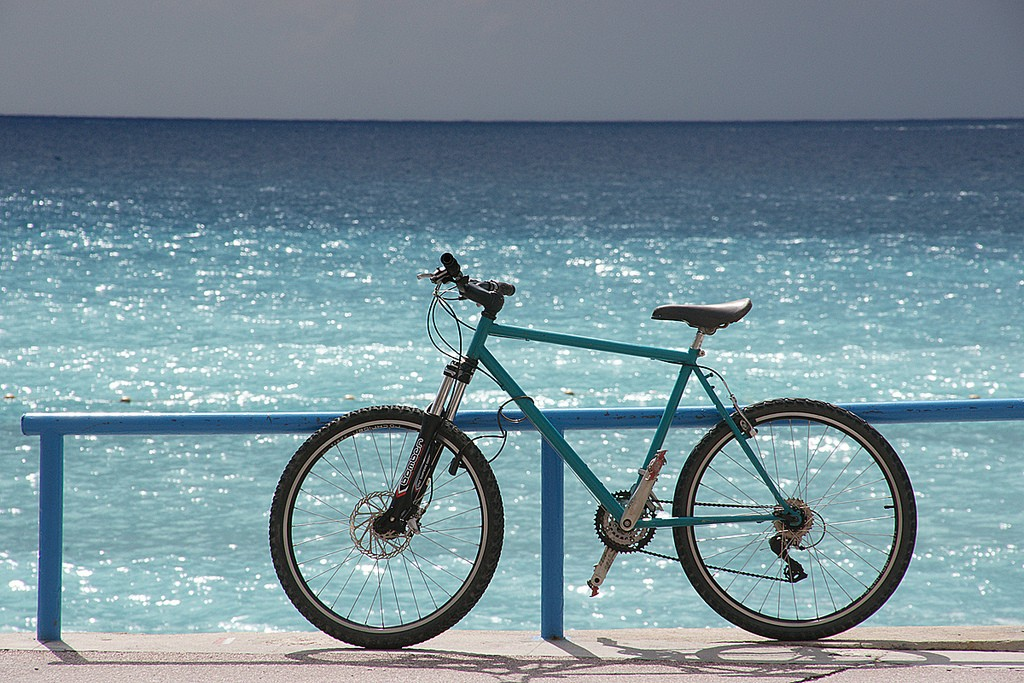 If you just found out your bike could ride on water, where is the first place you would go? Describe the experience.