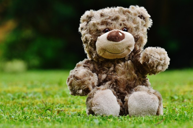 Do you have a favorite stuffed toy? What makes it so special?