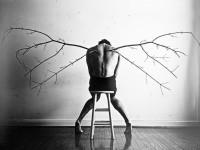 1462196857_wings