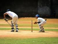 cricket-166930_1920