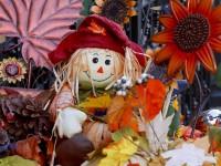thanksgiving-1767949_1920