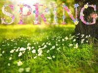 spring-1210194_960_720