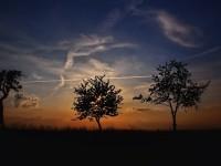 sunset-188347_1920