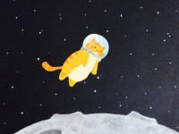 1495117170_spacecat