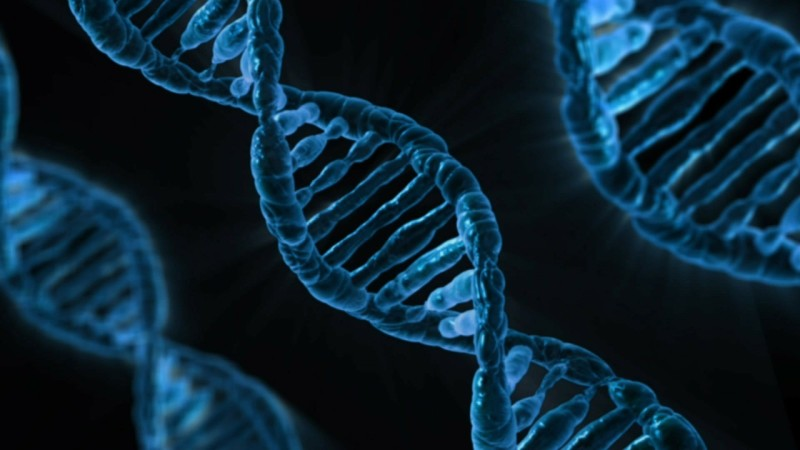 What are the pros and cons to human cloning? Based on these pros and cons, are you for or against human cloning?