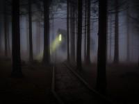 foggy-545838_1920