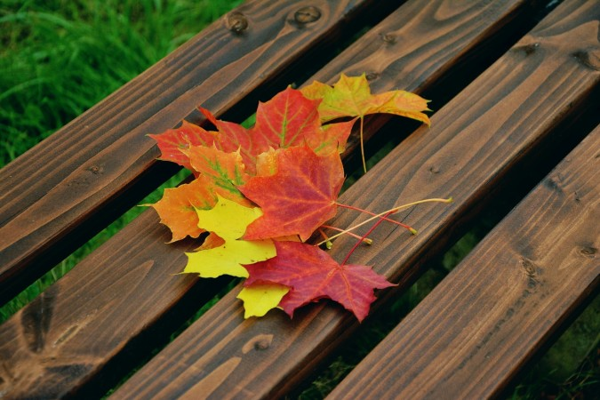 "Why is this season called both ""fall"" and ""autumn""?  Which do you prefer?"