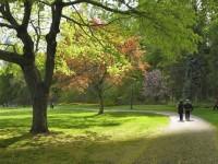 1505331001_5087254_by_welding@lesd.k12.az.us_Walk-in-the-Park
