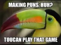 pun for write about