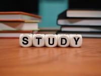 1508420732_6601707_by_Cayna_Carnes_study