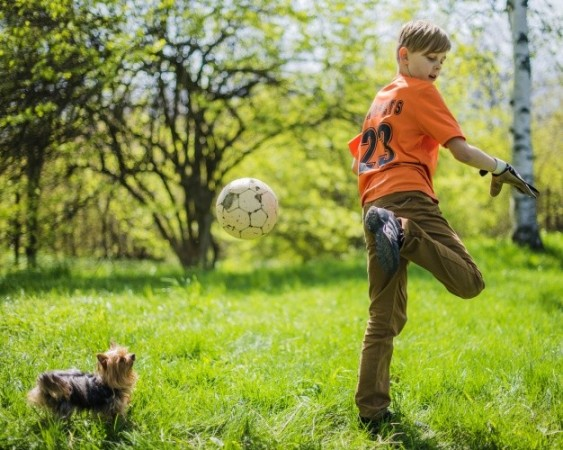 1508439325_4740278_by_joannavr123_boy-playing-with-ball_23-2147637128