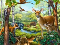 1513867210_7071227_by_Jodi_Rosekat_forest-animals