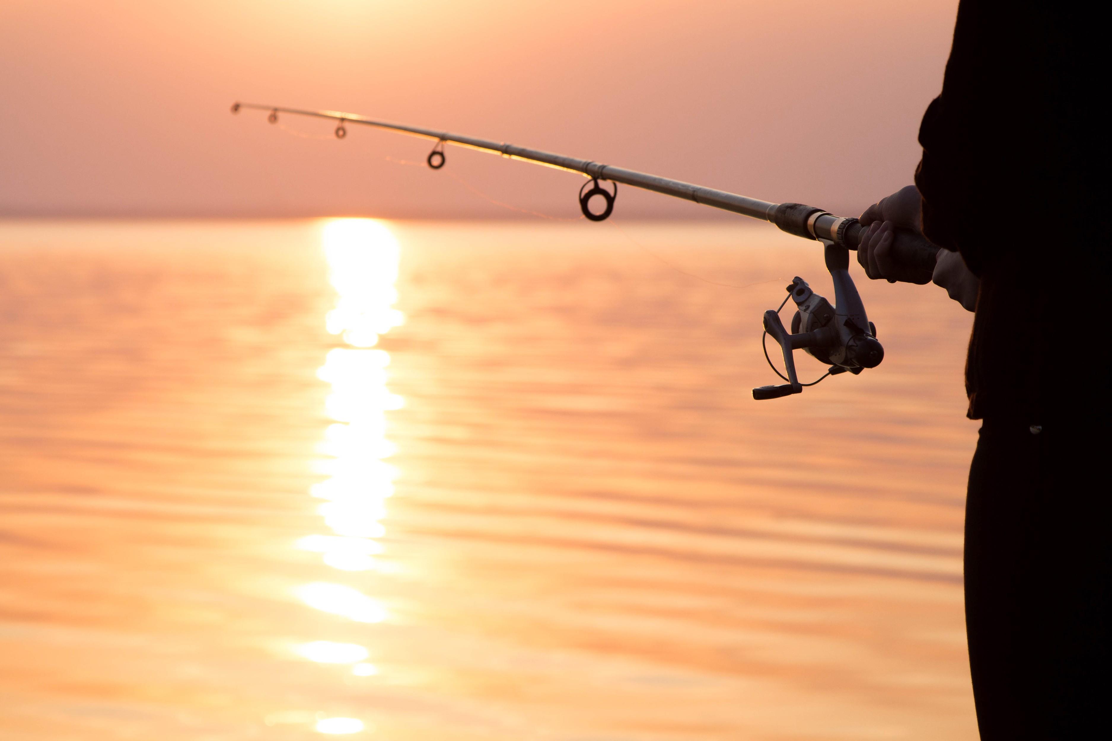 1533828500611944_by_teacher1_fishing