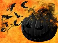 1570114393846752_by_hans3595_pumpkin-988231_1920