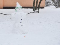 15753884657766825_by_Collin_Nuismer_Snowman
