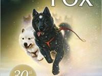 15811084942811656_by_ashley.pagel_stone-fox