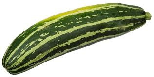 Is zucchini a vegetable?