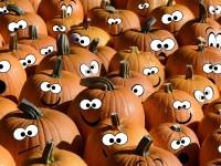 halloween-2770084_1920