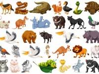 set-wild-animals_1308-25671 (1)